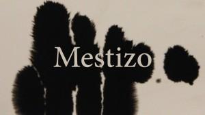 Mestizo_Still_1