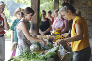 Farm Market at Stone Barns Center